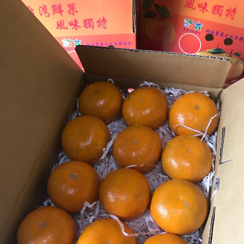 湖山水庫茂谷柑禮盒(10斤)