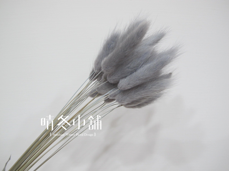 [晴冬小舖] 灰色兔尾草-進口乾燥花材(乾燥花束 不凋花 乾燥花圈)3D1503