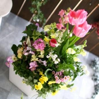 春の寄せ植え 花うるるアレンジ『チューリップ 寄せ植え 選べる陶器鉢』 開花期:~4月 花束 鉢植え ギフト プレゼント 新築祝い 結婚祝