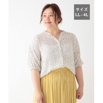 (studio CLIP/スタディオクリップ)プリント変形シャーリングシャツ[WEB限定プラスサイズ]/ [.st](ドットエスティ)公式