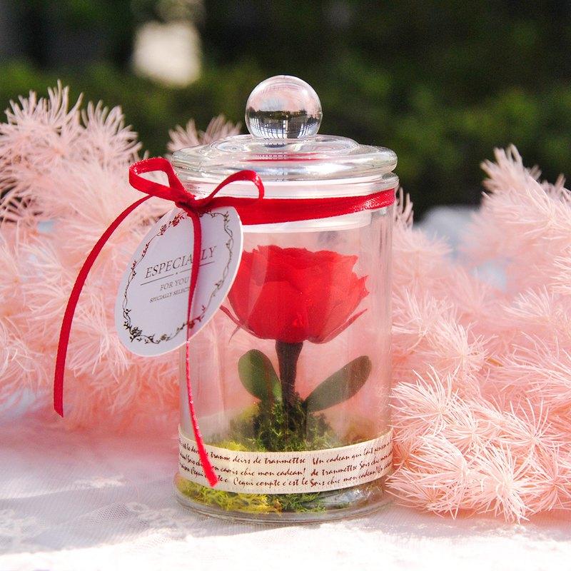 迷你瓶中永生花-小王子的玫瑰 美女與野獸 母親節禮物