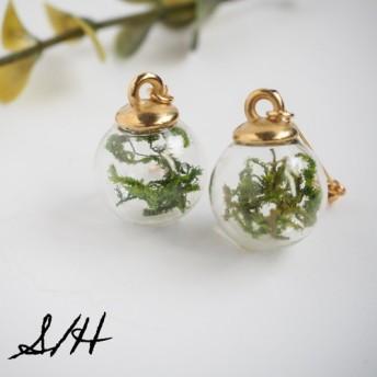 botanical world:グリーンモス×ガラスドームイヤリング/ピアス