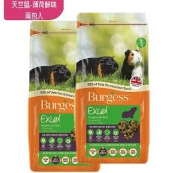 Burgess英國伯爵 - 天竺鼠飼料-薄荷鮮味 2KG-兩包入