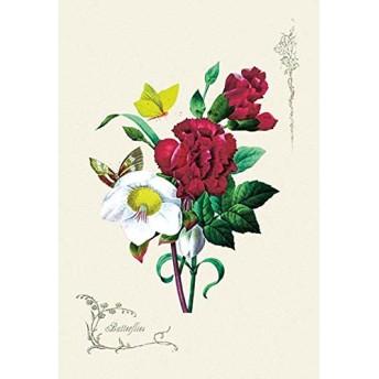 肌の色Fineアートキャンバス印刷( 20 x30 )
