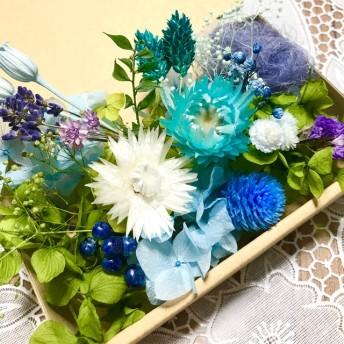 Blue Blue ラベンダー香るシルバーデージー *ハーバリウム 花材ドライフラワー 花材詰め合わせセット