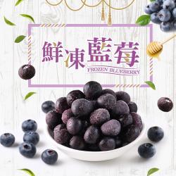 好食讚 鮮凍藍莓10包組(200g±10%/包)