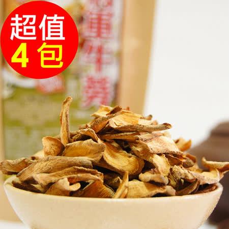 【生展】台南將軍牛蒡薄片(100g)