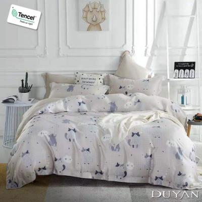 DUYAN 竹漾 100% 天絲 雙人床包三件組 喵與暖歌