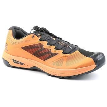 [サロモン] シューズ スニーカー Men's X Alpine Pro Shoe Phantom/メンズ [並行輸入品]