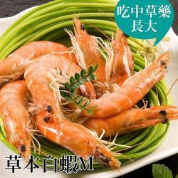 [台江漁人港]草本白蝦(M)(半斤/包,共二包)