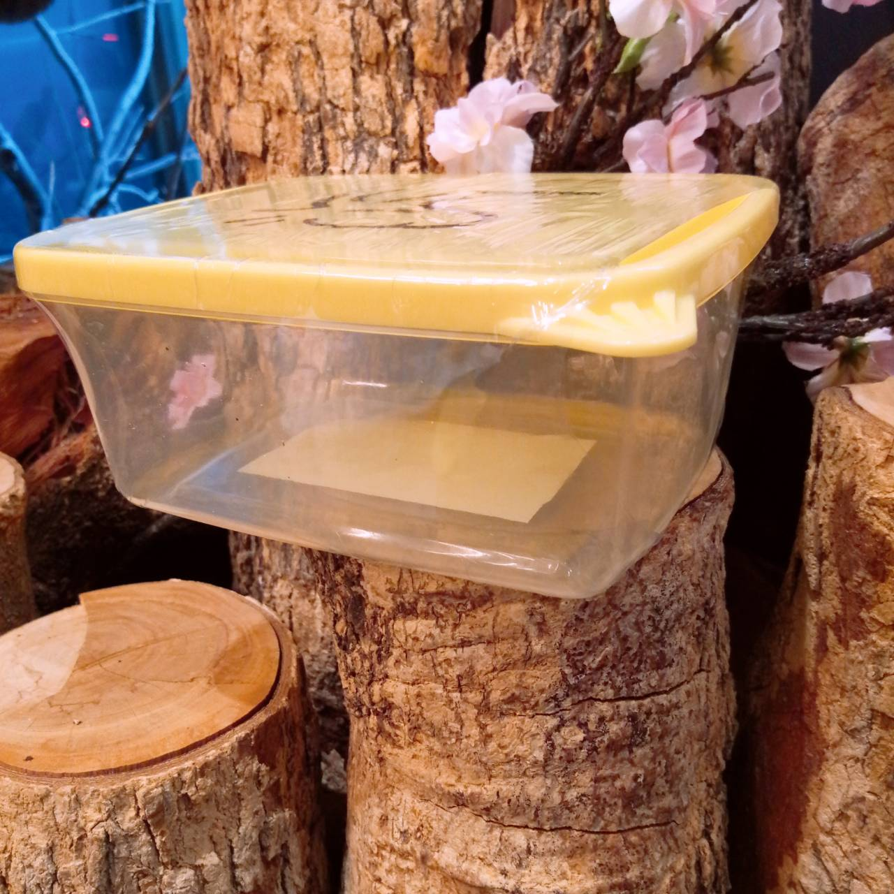 史努比 SNOOPY 史奴比 塔克鳥 1000ML 保鮮盒 1L 塑膠製 食器 廚房用品 18122800002 塑膠保鮮盒L-塔克黃 真愛日本