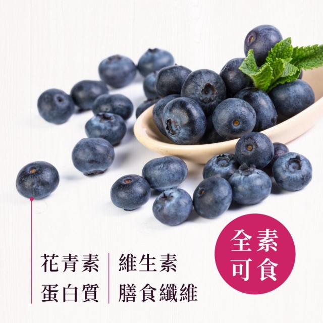 鮮採藍莓乾150G 每日優果