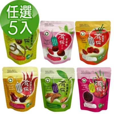 久美子工坊 有機果乾60g 任選5入組(洛神花/芭樂/番茄/檸檬/火龍果)