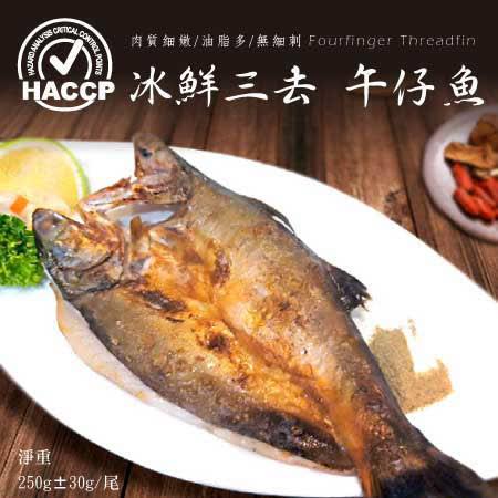 【頤珍鮮物】現流肥美午仔魚250g/份