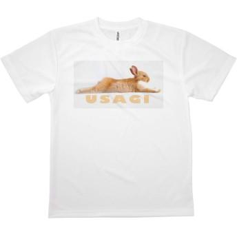 Tシャツ うさぎ