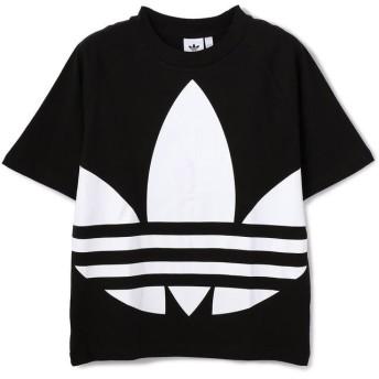 (LHP/エルエイチピー)adidas originals/アディダスオリジナルス/ビッグ トレフォイル ボクシー Tシャツ/FM9904/メンズ BLACK