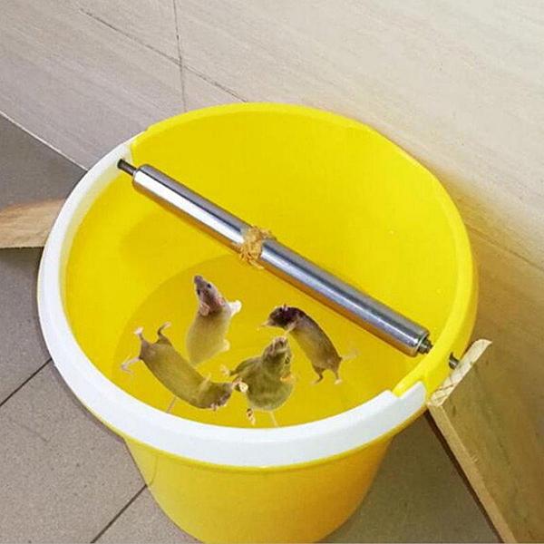 【GD361】滾輪補鼠棒 捕鼠夾滾筒捕鼠器 水桶捕鼠籠 老鼠籠補鼠器 免老鼠藥 EZGO商城
