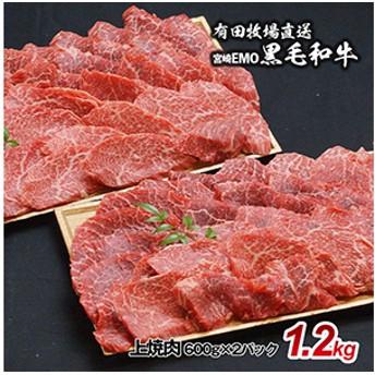 宮崎EMO黒毛和牛 上焼肉<1.9-3>