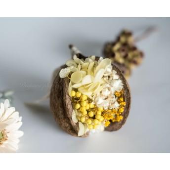 「Yellow blossom」 Buddha coconut arrangement