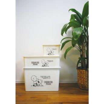 カラーボックスに収納できる フタ付収納ボックス 同色2個セット「PEANUTS/スヌーピー」