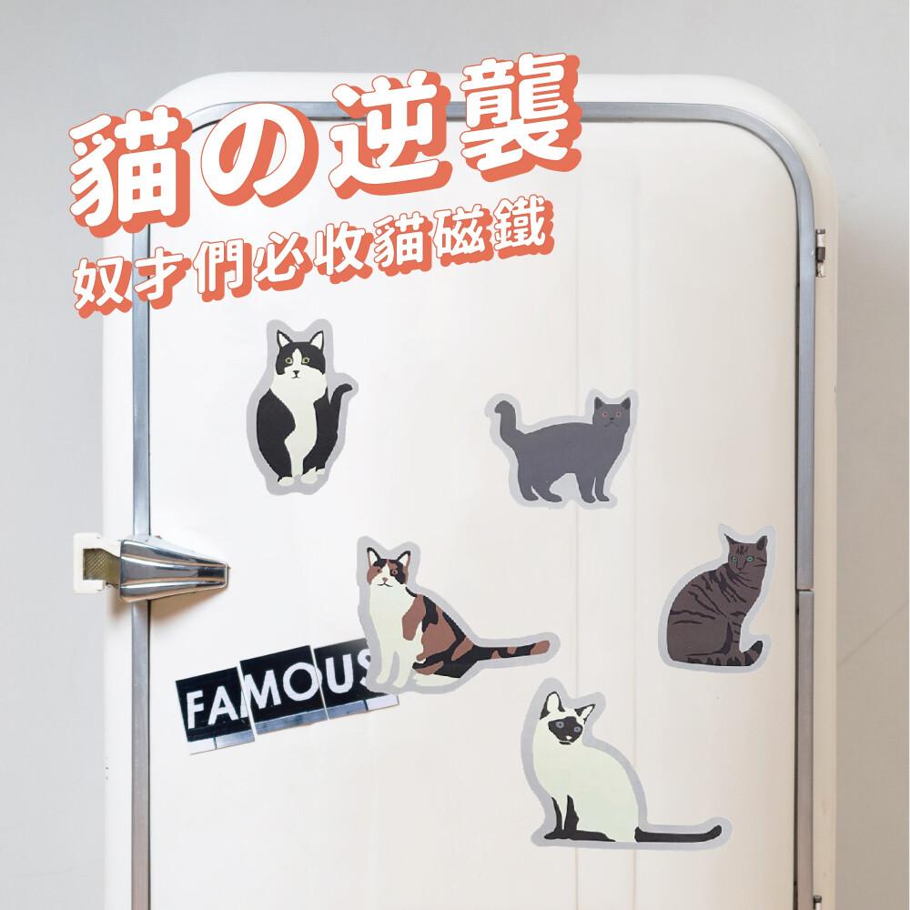 kikkerland貓咪磁鐵