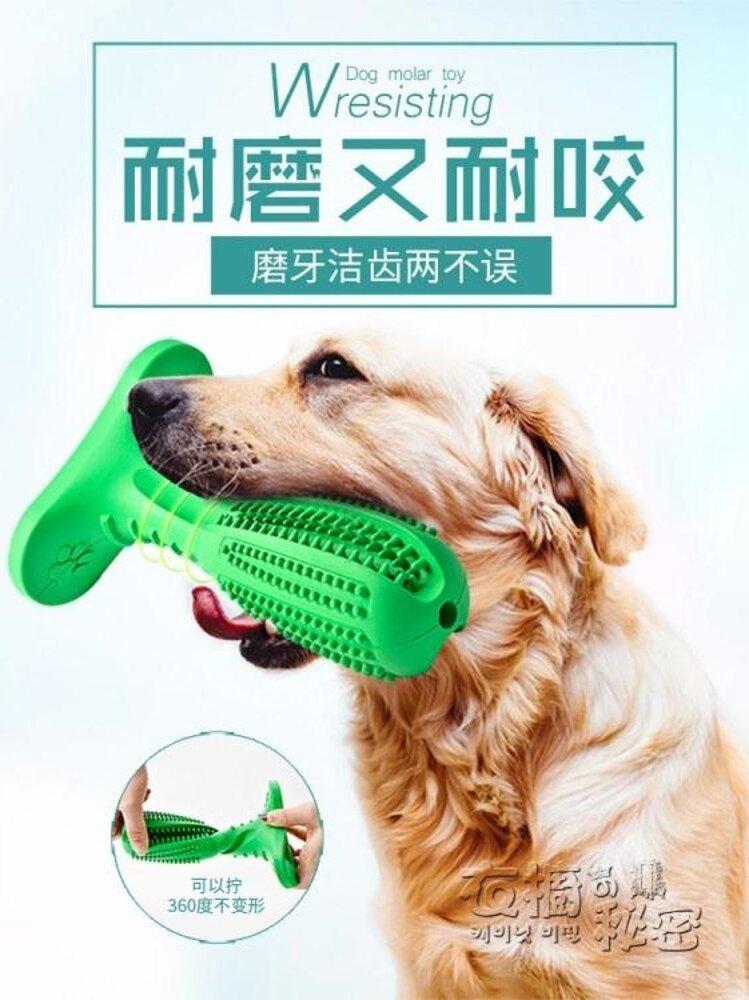 【免運】狗狗磨牙玩具大型犬刷牙神器寵物用品狗牙刷磨牙棒耐咬寵物潔齒棒 衣櫥秘密 喜迎新春 全館8.5折起