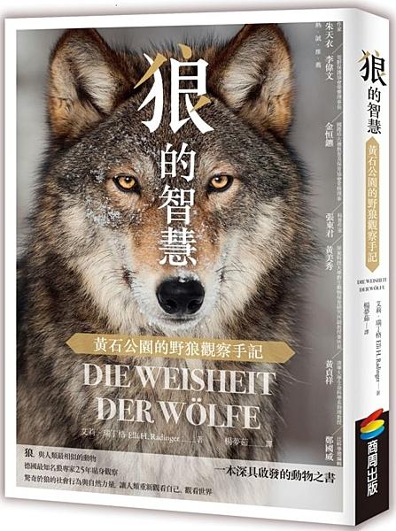 狼的智慧:黃石公園的野狼觀察手記【城邦讀書花園】