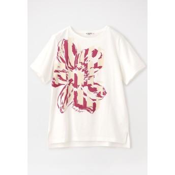 EVEX by KRIZIA 【ウォッシャブル】【消臭抗菌】トロピカルフラワーカットソー Tシャツ・カットソー,オフホワイト