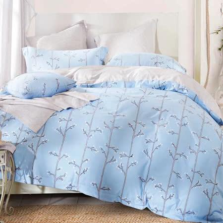 Betrise 香佩-藍-環保印染德國防螨抗菌精梳棉四件式兩用被床包組- 雙人