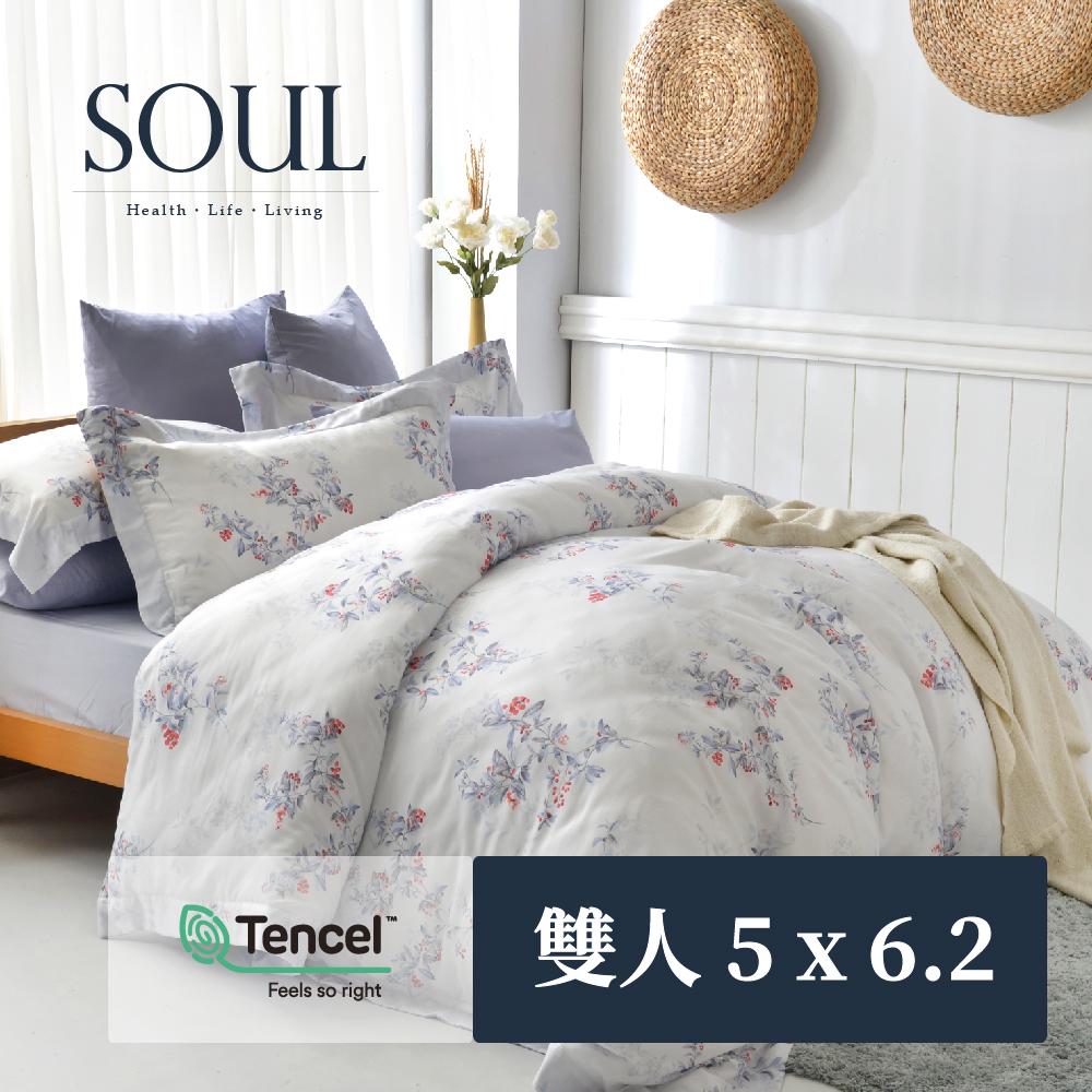 【SOUL Bedding】頂級80支天絲兩用被套四件組(標準雙人-5x6.2)