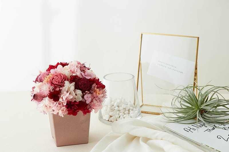 永生花 永生玫瑰 療癒小盆栽 乾燥花盆栽 紅粉色 婚禮小物 交換禮