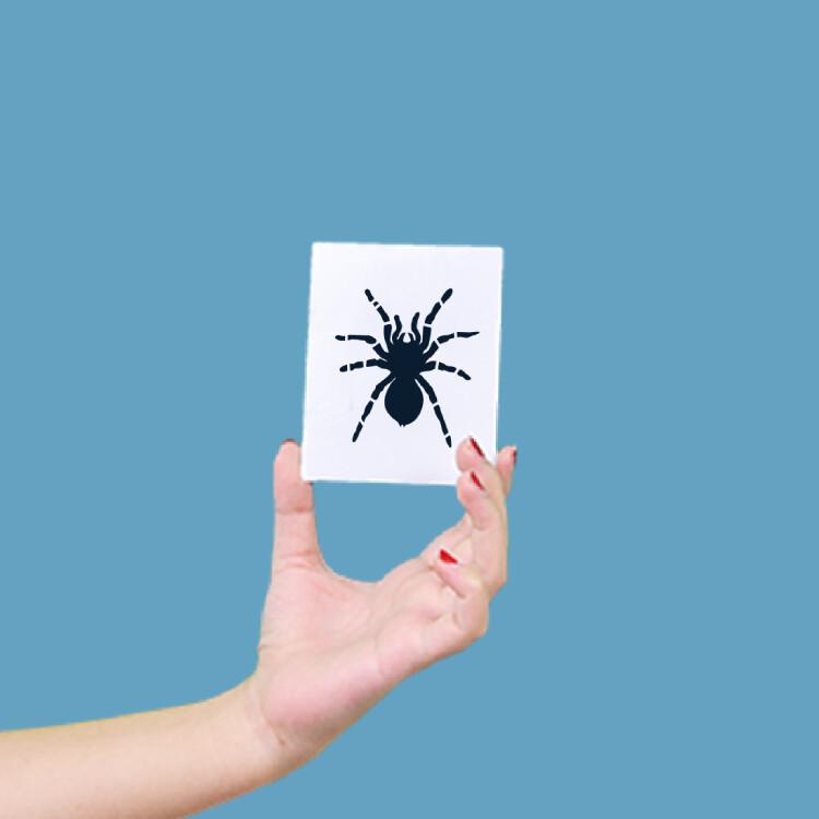 形紋身貼膜大蜘蛛78