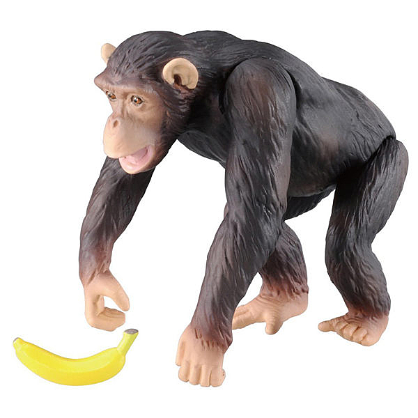 TOMICA 多美動物園 AS-14 黑猩猩_AN98149 TAKARA TOMY
