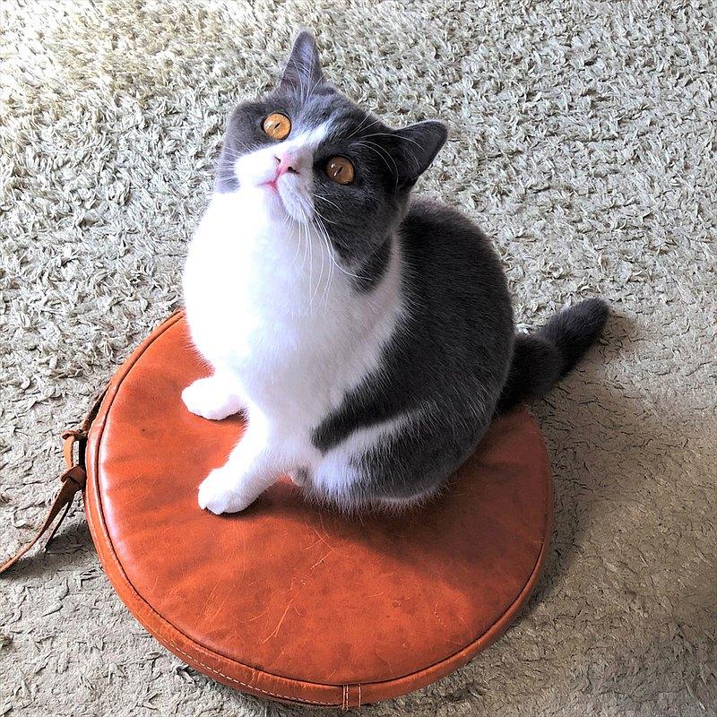 [日本製造的皮革產品]可以長期使用。[圓形]皮革坐墊lm8附帶的坐墊[選擇以下商品類型的顏色]