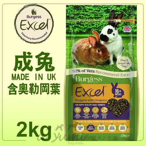 《英國伯爵Burgess》高機能兔飼料 - 成兔 / 添加奧勒岡葉 2kg
