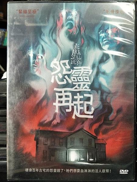 挖寶二手片-Z36-012-正版DVD-電影【怨靈再起】-(直購價)