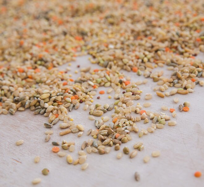 【米森 vilson】有機藜麥八寶米(900g/包)