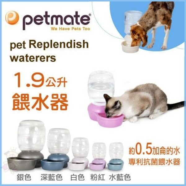 petmate餵水器1.9公升 犬貓用飲水器 (xs號)