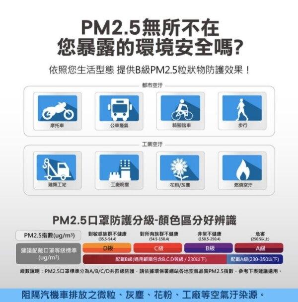 【EVERPOLL愛惠浦科技】PM2.5防霾口罩 (無透氣閥版本)