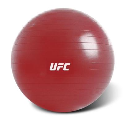 UFC  健身球 65cm PS020008-40-01-F
