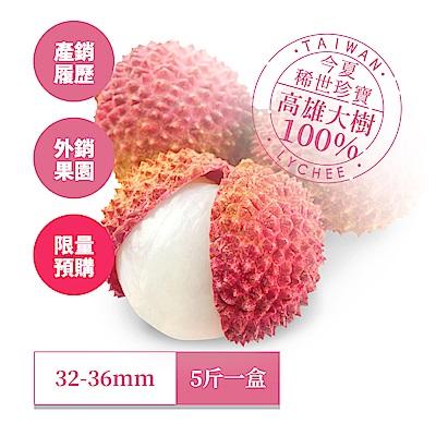 【高雄大樹】外銷級玉荷包 5斤1盒(32-36mm 產銷履歷/外銷果園)
