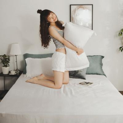 絲薇諾  MIT40支天絲  茶白  雙人加大6尺三件式-床包枕套組
