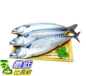 [COSCO代購] W263664 冷凍薄鹽白腹鯖魚6公斤