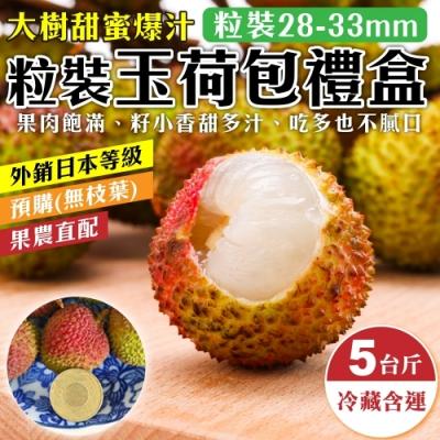 【果農直配】大樹爆汁28-33mm玉荷包5斤禮盒1盒(粒狀/去枝去葉)