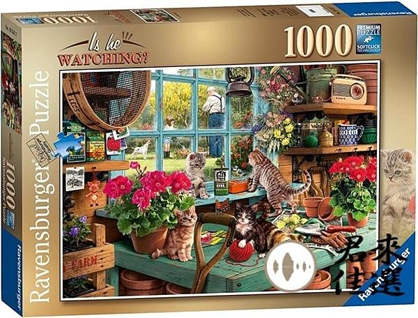 窗台的貓拼圖1000片成人減壓兒童益智拼圖玩具【君來佳選】