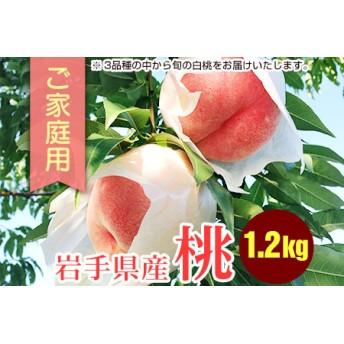 ふじむら農園のご家庭用白桃1.2kg
