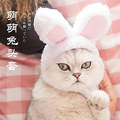 宠物猫咪兔耳朵头套猫咪可爱帽子装饰品头饰装扮宠物用品
