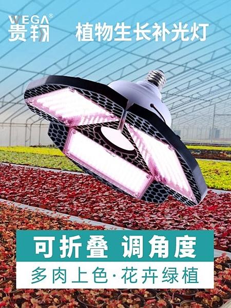 植物燈 貴翔 植物補光燈全光譜蔬菜溫室大棚室內多肉上色仿太陽光生長燈 寶貝計畫