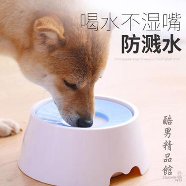 狗狗喝水器防濺水不濕嘴飲水器水盆喝水碗狗碗狗盆泰迪寵物用品