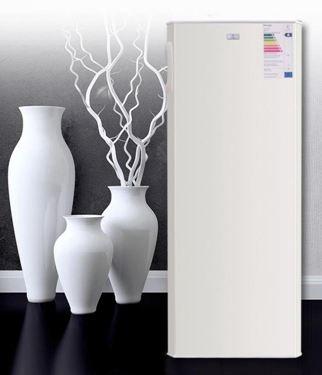 德國家用單門 全冷凍小型冰櫃 立式商用冷櫃抽屜式家用冰櫃